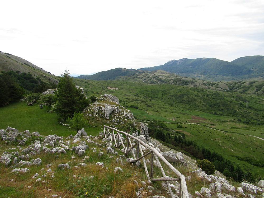Territorio: Parco del Cilento, Valle di Diano e Alburni. Aprire i parchi alla cinofilia